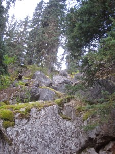 lovely_mossy_boulders_on_approach_USE